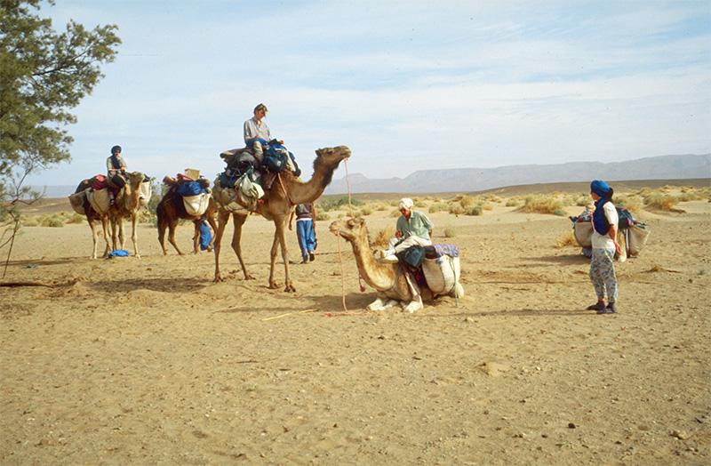 Caravane dans le désert du Maroc