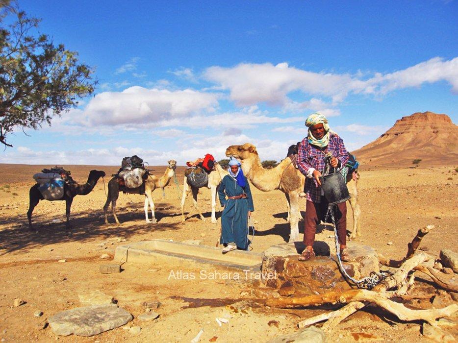 L'eau est la vie dans le désert