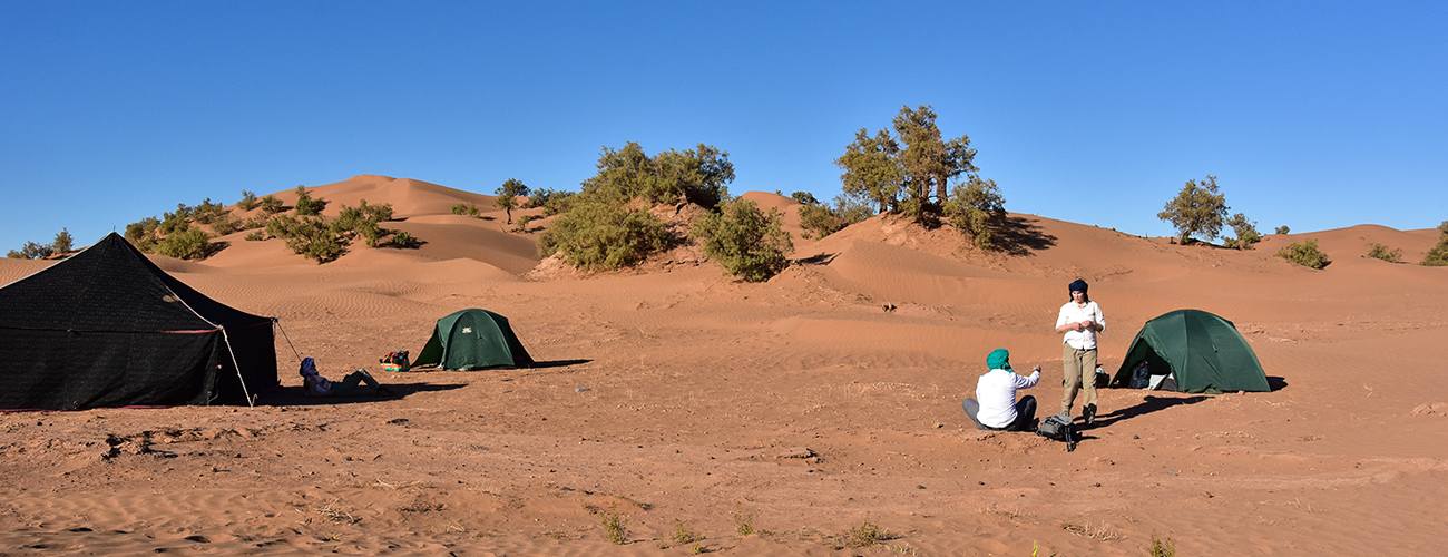 sahara-voyage-maroc